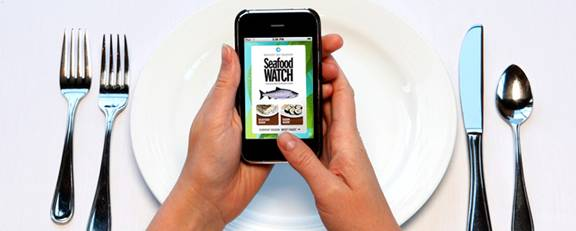 Mobile IPhone App Lets You Choose Enviro-Friendly Seafood