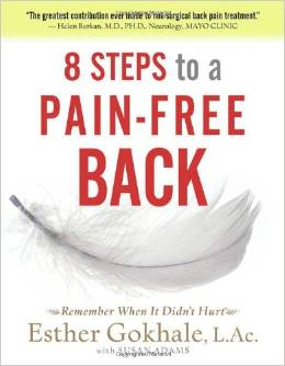 8 Steps to a Pain Free Back 2010 1st quarter Book Review