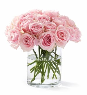 2 Dozen Roses California Blooms Giveaway–2010 Mother's Day Gift Guide