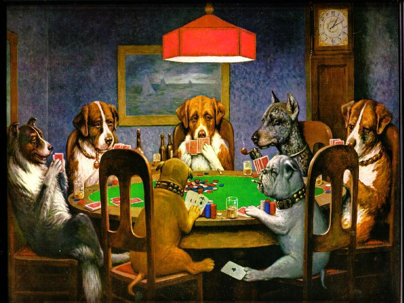 Top Eight Pet Friendly Casinos