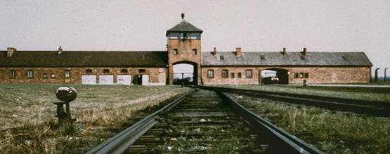 Auschwitz banner