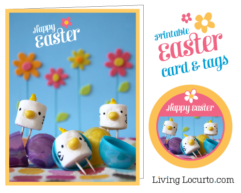 Cute Stuff you Need to See!  Easter Marshmallow Chicks!