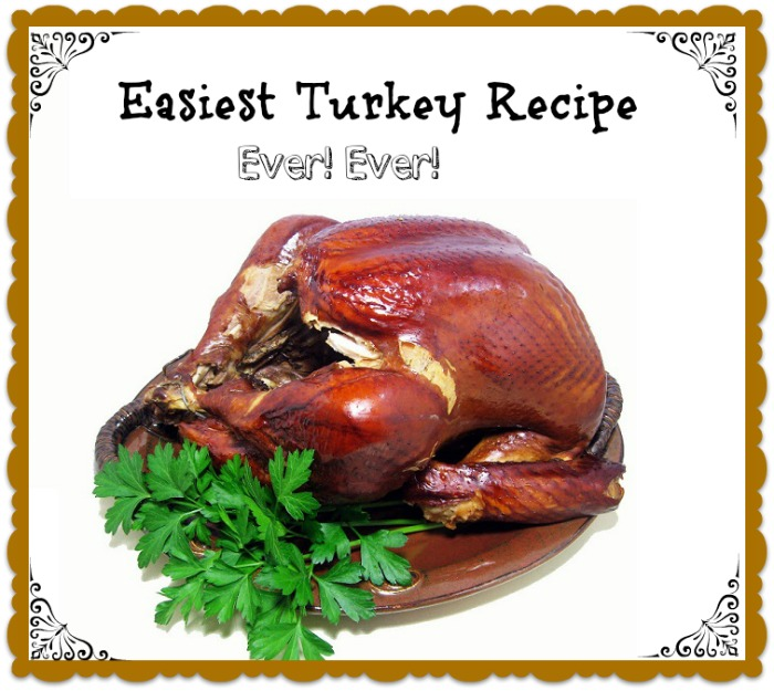 Easiest Turkey Recipe Ever ever