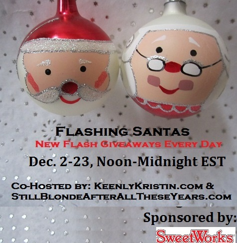 day 9 Flashing Santas 2013
