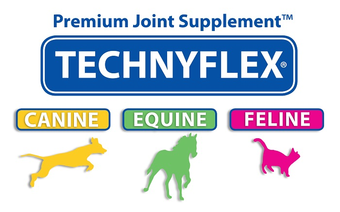 Technyflex Premium Joint pain supplement Greenlipped Mussel New Zealands best