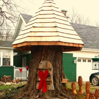 Tree Stump Gnome Home Tree Stump Houses