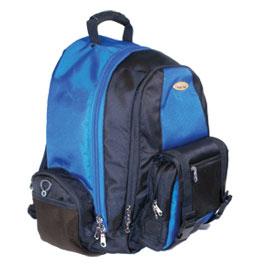 Isafe Collegiate laptop Bag