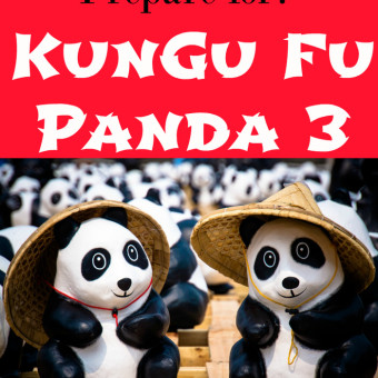 Video Kung Fu Panda Plot Summaries 2