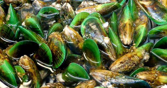 Non-opiod Joint Pain Relief New Zealand Greenlipped Mussel Mobicosa New Zealand's Best