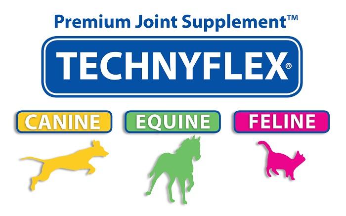 Technyflex Premium Joint pain supplement Greenlipped Mussel New Zealands best