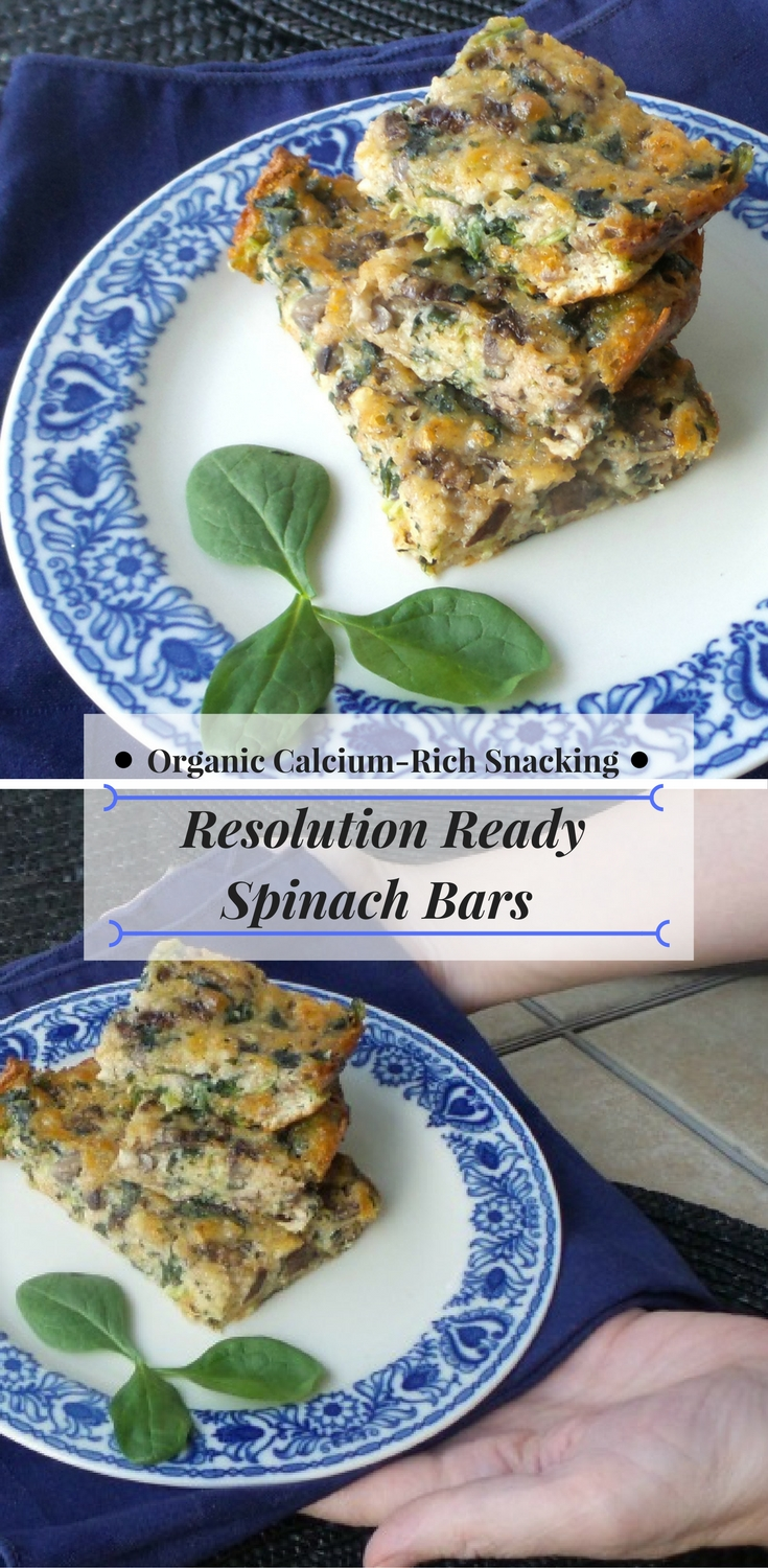 Resolution Ready Spinach Bars Recipe for Organic, Calcium-Rich Snacking  #AD #MeijerResolution #getresolutionready #Recipe @horizonorganic  #SpinachRecipes