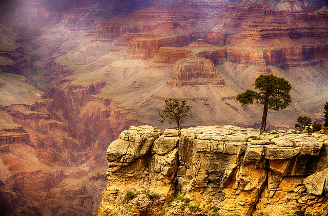 What States begin with a Grand Canyon Arizona